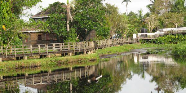 Home Church and Community Outreach (Jamaica)