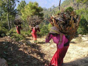 villagers farming